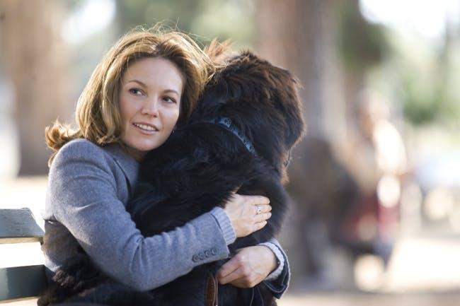 Turi mylėti šunis