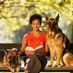 Наоѓање на домашни миленичиња гледачка