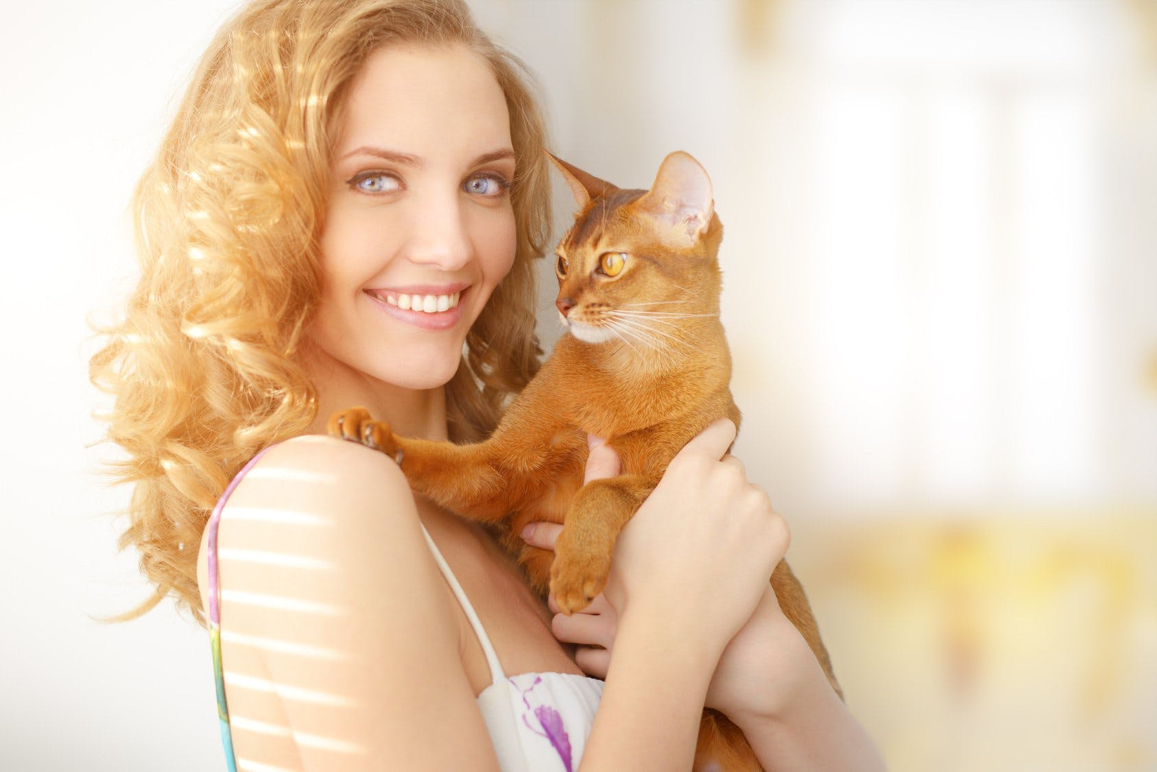 10 Reasons Why Cats Are Superior to Boyfriends