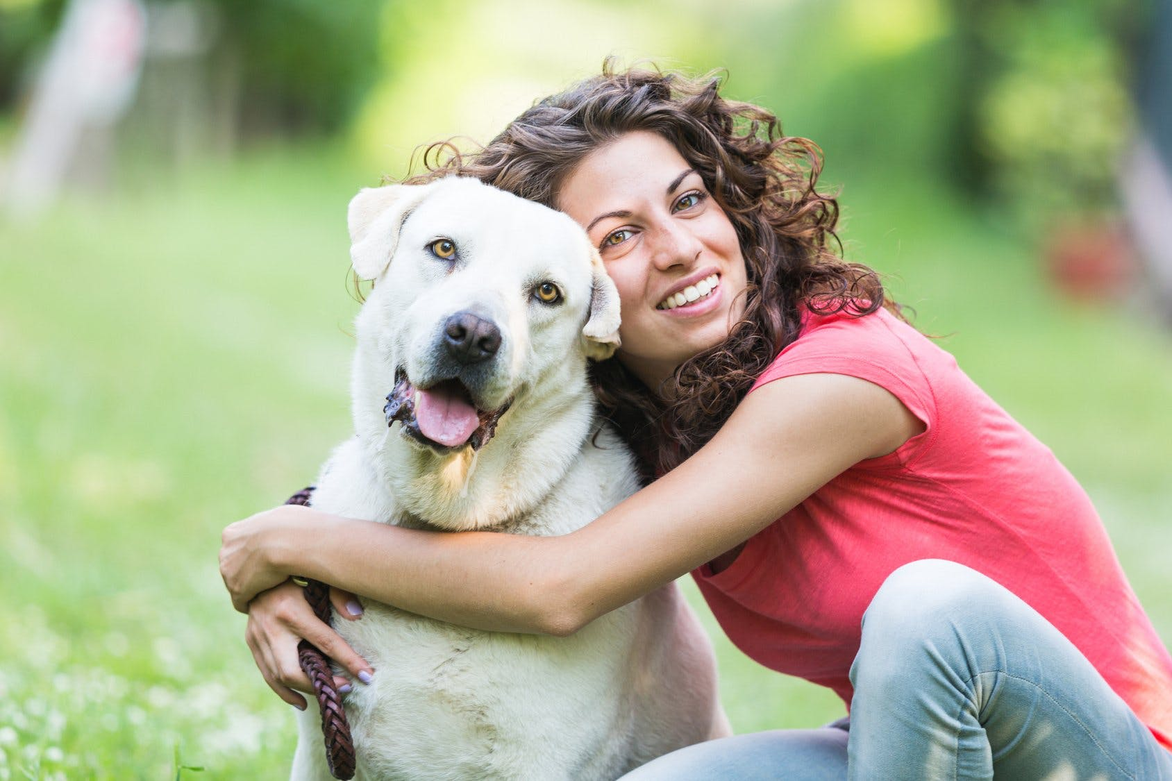 Are You Ready To Commit To A Pet?