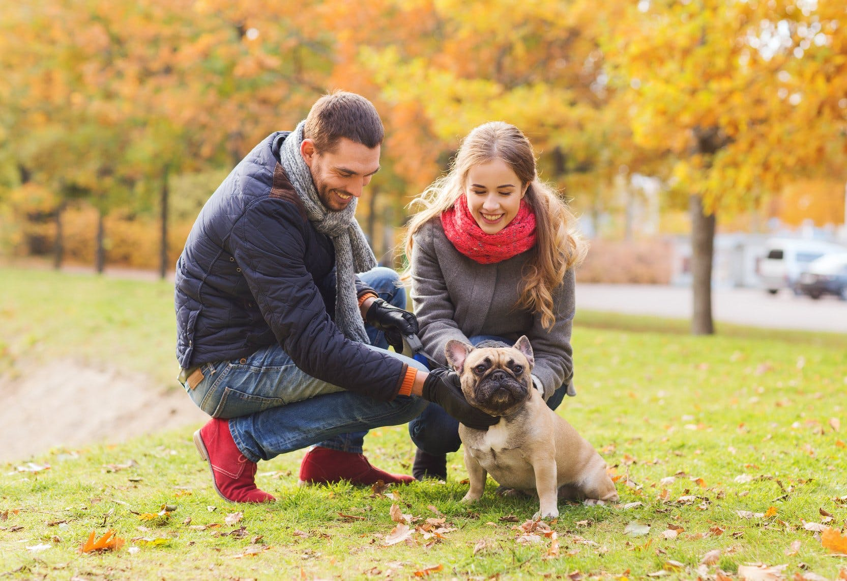 Dog friendly dating sites
