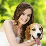 7 Quod vera About Pet Lovers